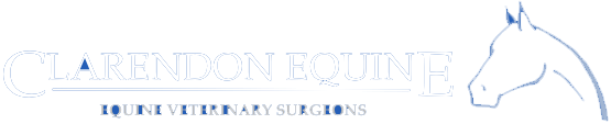 Clarendon Equine Logo