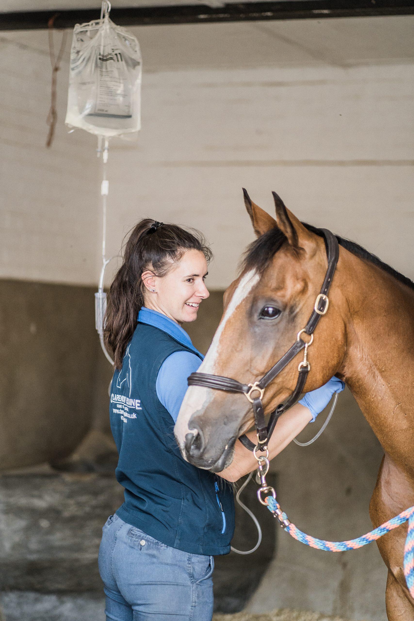 horses health problems