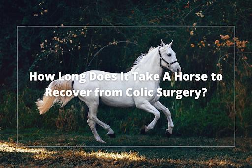 colic surgery