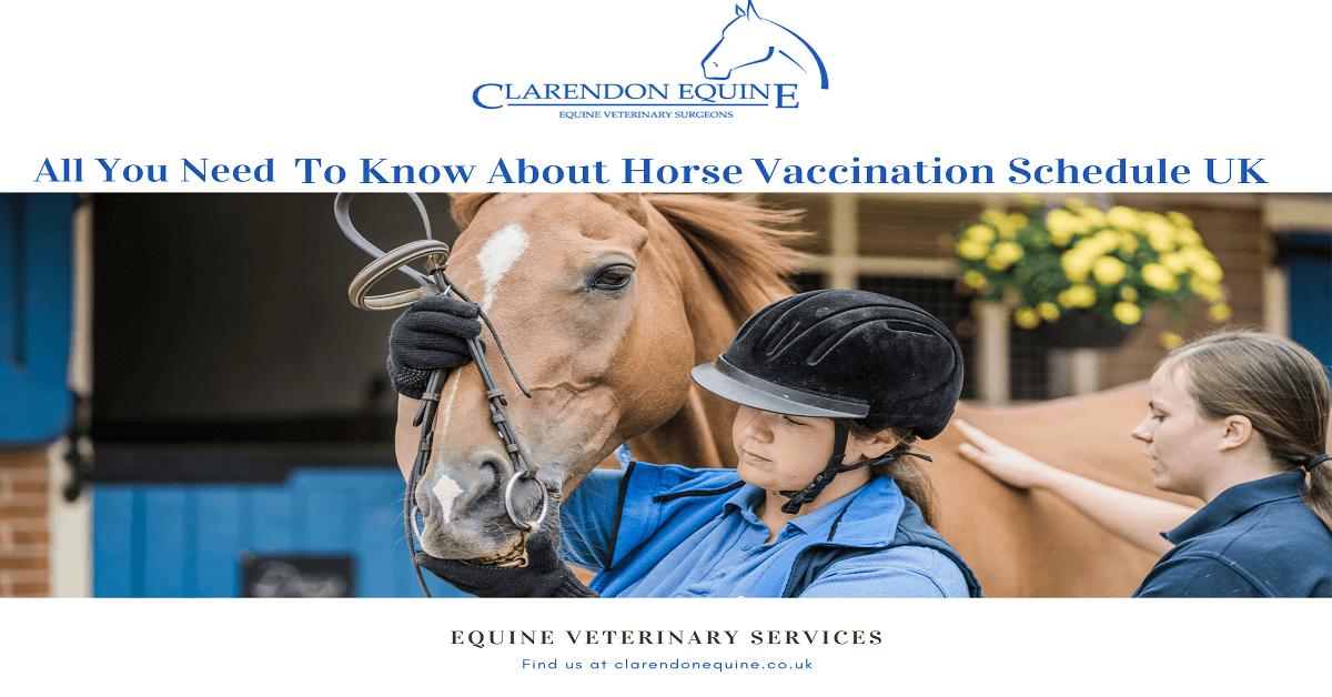 horse vaccination schedule UK